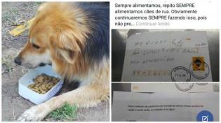 Mercado que alimenta cães de rua recebe carta anonima com ameaça de envenenamento da comida e da água dos animais