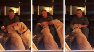 Vídeo: Cachorrinho ciumento ganha remédio de mentirinha para ficar contente :)
