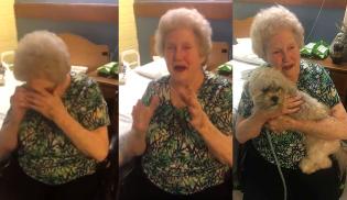 Vovózinha depressiva é surpreendida por sua família ao ganhar novo melhor amigo