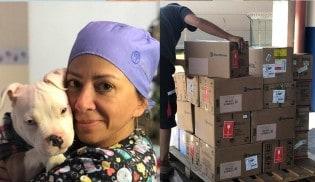 Veterinária catarinense leva 300 kg de remédios aos animais de Brumadinho