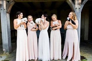 Casal substitui buquê por filhotes para adoção em casamento (VEJA AS FOTOS)