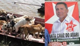 Ex-prefeito é condenado a 20 anos de prisão por matança de cachorros