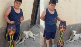 Criança coloca seu patinete a venda para comprar remédio para cão de rua