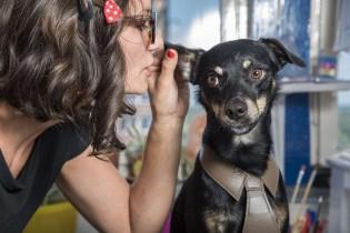 Falar com seu pet não é maluquice, é um sinal de inteligência social, afirma estudo