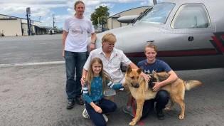 Cão roubado é devolvido à família após 2 anos