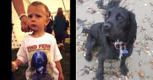 Criança que teve sua cachorrinha roubada a reencontra 6 anos depois