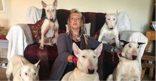 Um homem fez sua esposa escolher entre ele ou seus cães – ela escolheu os cães
