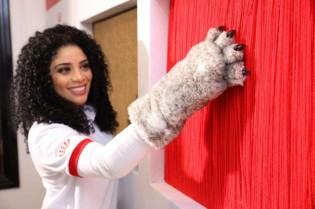 Exposição na Casa do Gato em SP convida humanos a se sentirem na pele dos felinos