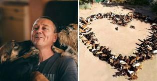 Homem acolhe cachorros 'indesejados' e acaba abrindo abrigo com 750 deles na Sérvia