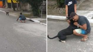 Em Praia Grande, homem tem reencontro emocionante com seu cão