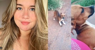 Adolescente bondosa leva cãozinho abandonado para casa e recebe resposta de mãe