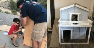 Menino de 9 anos ama tanto seu gatinho que decide construir casa de dois andares