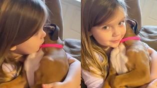 Menina canta música sobre Jesus para ninar cão boxer e vídeo bomba nas redes sociais