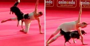 Cachorra dançarina faz incrível apresentação de dança ao lado de tutora e vídeo faz sucesso