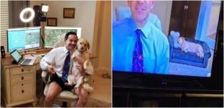 Cadela de jornalista rouba a cena durante transmissão ao vivo em home office