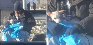 Morador de rua vê cachorro chihuahua sendo abandonado, o resgata e garante que cão não será um sem-teto como ele