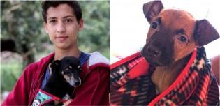 Com apenas 17 anos, jovem cria instituto para acolher animais abandonados em Anápolis, Goiás