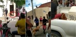 Cachorro reage à agressão de homem que tentou ferir a sua dona, uma idosa de 70 anos; vídeo