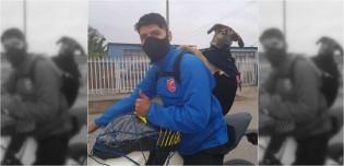 Jovem peruano acolhe cadela de rua enquanto fazia delivery e agora a leva para todos os lugares