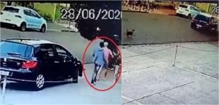 Após ser abandonado, cachorro corre atrás de carro de donos na esperança de alcançá-los em Londrina; vídeo