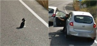 Carro do Google registra imagens de homem parando o carro para salvar gatinho em rodovia movimentada