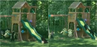 Momento encantador: Família de ursos é filmada se divertindo em parque infantil em Asheville