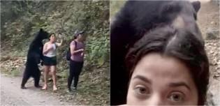No México, urso-negro invade trilha e 'posa para selfie' com turistas em vídeo arrepiante; assista