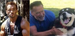 Arnold Schwarzenegger adota cão que recebeu o nome de um famoso personagem interpretado pelo astro