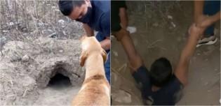 Jovem equatoriano entra em buraco com 7 metros de profundidade para resgatar 8 filhotes recém-nascidos