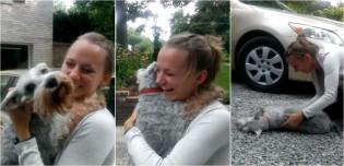 Cão schnauzer literalmente desmaia de alegria ao rever sua dona após dois longos anos; assista