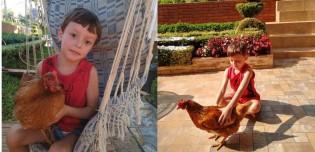 Garotinho passa a quarentena no interior na casa dos avós e cria vínculo especial com galinhas; vídeo