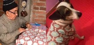 Com muito amor, vovô costura suéter para seu cachorro e vídeo comove web