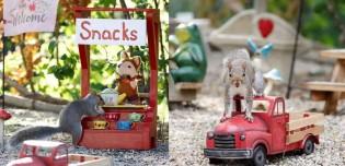 Fotógrafa dribla depressão criando 'cafeteria' para esquilos brincarem no seu jardim; 49 fotos