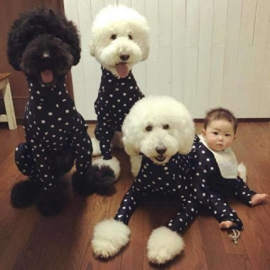 Foto: Instagram / tamanegi.qoo.riku