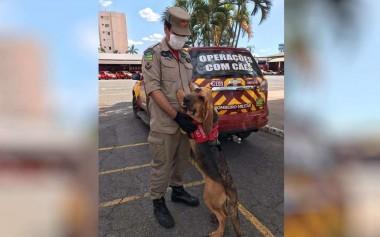 Foto: Reprodução/TV Anhanguera