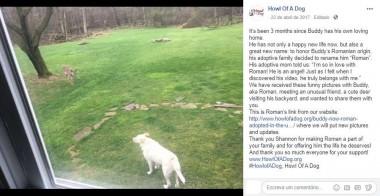 Foto: Facebook / Howl Of A Dog
