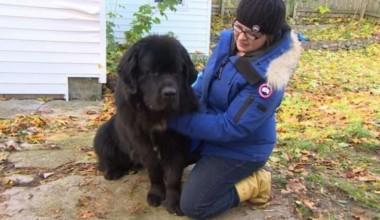 Foto: Reprodução / CBC News
