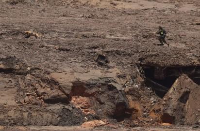 especialista israelense acompanha seu cão farejador que dispara em meio à lama em busca de vítimas em Brumadinho, na quarta-feira (30) — Foto: Andre Penner/AP