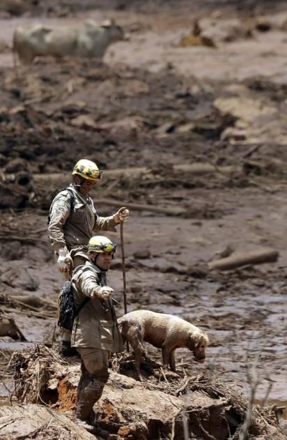 Socorristas e cão farejador procuram por corpos em Brumadinho, na terça-feira (29) — Foto: Andre Penner/AP