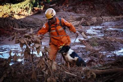Bombeiro conduz cão farejador em busca de vítimas no meio da lama em Brumadinho, na segunda-feira (28) — Foto: Mauro Pimentel/AFP