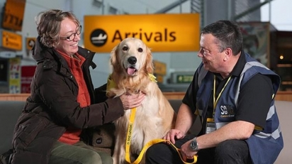Foto: Therapy Dogs Nationwide