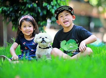 O cãozinho Baymax com os filhos de Peter Phethalankham.
