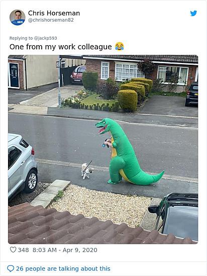Vestido de dinossauro.