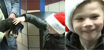 O menino Henry em uma visita que realizou ao abrigo para entregar a doação.
