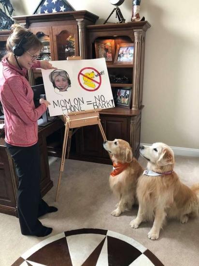 De maneira irônica, dona tenta ensinar seus cães as novas regras de comportamento, já que ela está em home office. (Foto: Facebook / Rochelle Andonian)