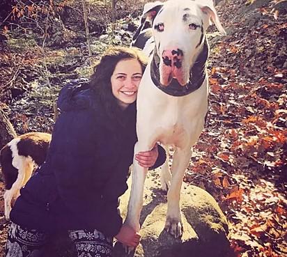 O cachorro da raça dogue alemão e sua dona, Alyssa.