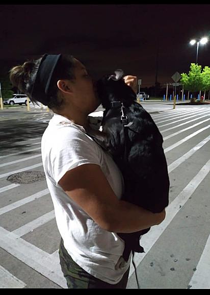 O cão foi encontrado em um supermercado local.