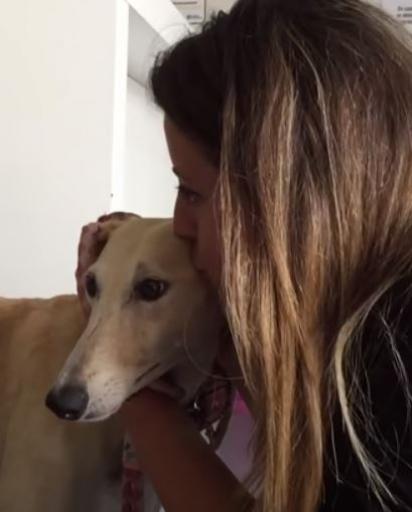 Logo que se recuperou a cadelinha foi adotada por uma família que demostrou todo o amor por ela no primeiro encontro.
