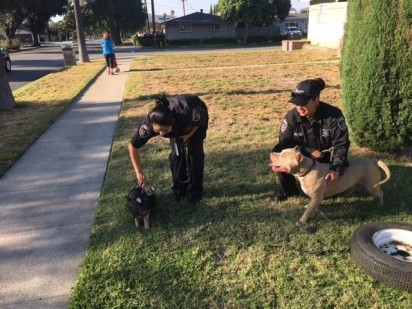 Foto: City of Fontana Police Department