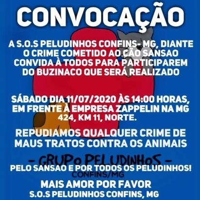 Foto: Divulgação / SOS Peludinhos Confins  Buzinaço será feito por Sansão no sábado (18).